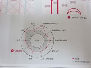 スキンチェックグラフ